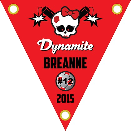 "TP12 - 12"" Triangle Dynamite Pennant"